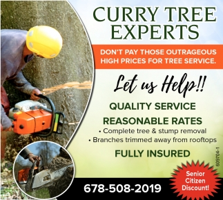 Complete Tree & Stump Removal